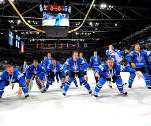 finland and lions image