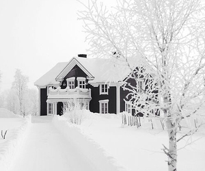 white, house, and love it image