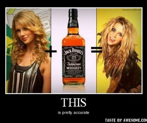 drunk, funny, and jack daniels image