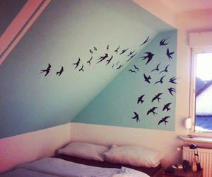 birds, cool, and room image