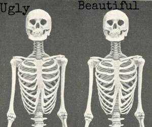 beautiful, ugly, and skeleton image