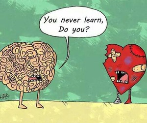 heart, brain, and learn image