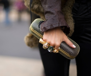 fashion, clutch, and Alexander McQueen image