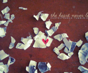 heart, never, and lies image