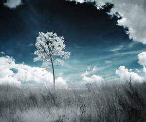 blue, nature, and clouds image