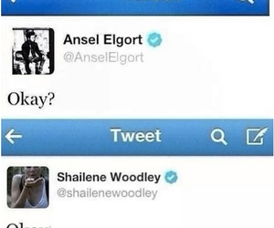 ansel elgort, Shailene Woodley, and the fault in our stars image