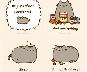 weekend, pusheen, and cat image