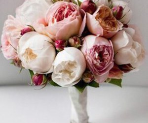 chanel, like, and rose image