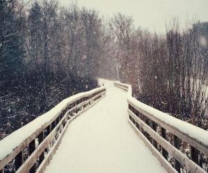 beautiful, bridge, and christmas image