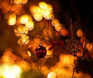 christmas, bokeh, and lights image
