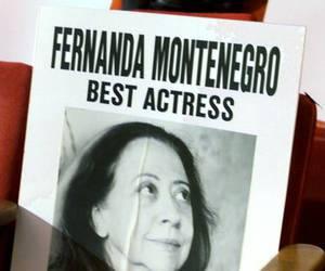 Academy Awards, brasil, and brazil image