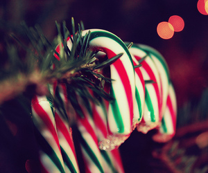 candy, cane, and christmas image