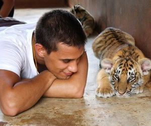 <3, aww, and tiger image