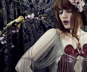 music, florence+++the+machine, and florence+welch image