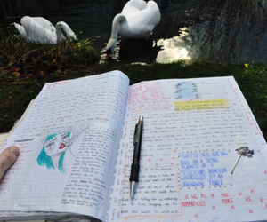 drawing, grunge, and notebook image