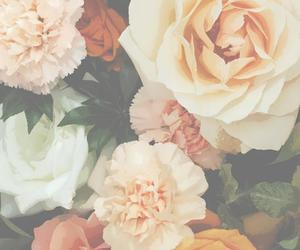 flores, flowers, and love image