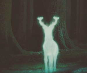 harry potter, patronus, and deer image