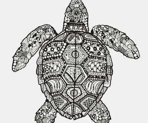 turtle, black and white, and mandala image