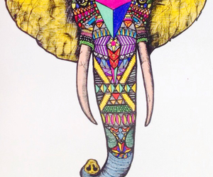 animal, color, and drawing image