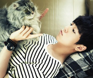 lee hyun woo, actor, and cat image