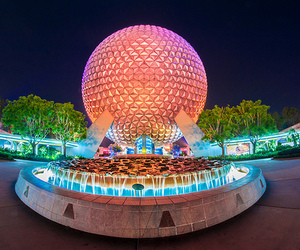 tumblr and epcot image