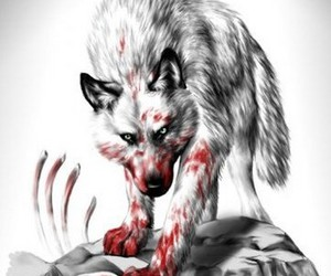 wolf and Serbia image