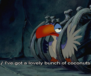 zazu, coconuts, and the lion king image