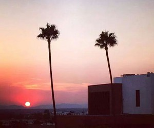 beauty, palm trees, and sunset image