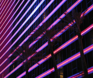 neon, purple, and pink image