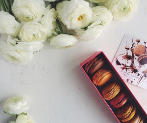 eat, macaron, and food image