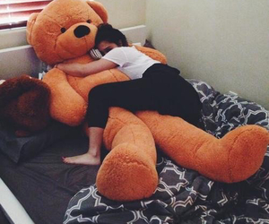 bear, comfy, and cuddling image