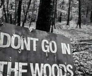 woods, black and white, and creepy image