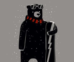 bear, black, and cold image