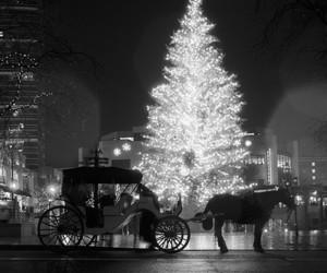 christmas, black and white, and inspiration image