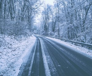 forest, road, and winter image