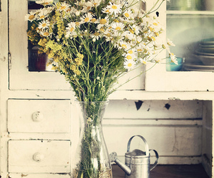 flower, grunge, and life image