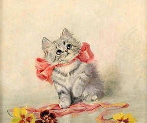 cute and cat image