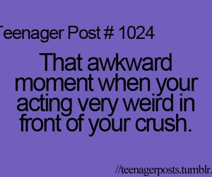 crush, quotes, and teenager post image
