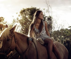 country, countryside, and horse image