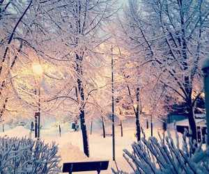 winter, snow, and christmas image