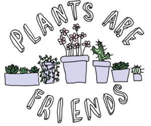 plants, transparent, and tumblr image
