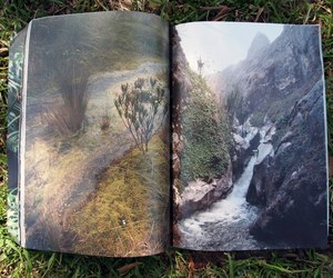 nature and book image