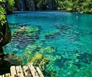 water, summer, and blue image