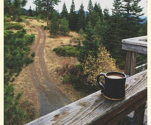autumn, trees, and coffee image