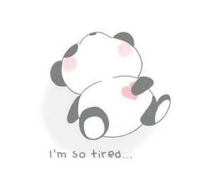 panda, cute, and tired image