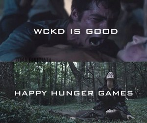 thomas, the maze runner, and the hunger games image