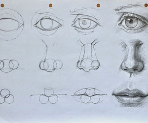 drawing, art, and nose image
