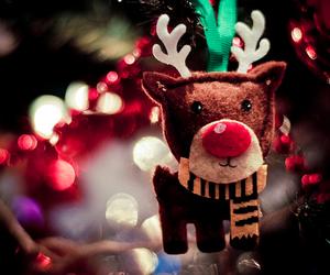christmas, reindeer, and light image