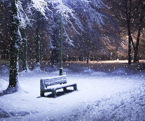snow, white, and winter♥ image