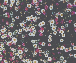 background, bands, and flowers image